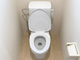 トイレリフォーム 汲み取り式トイレも明るい洋式水洗トイレに
